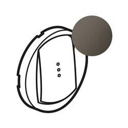 Enjoliveur Céliane - VV / poussoir / télérupteur à voyant - doigt large graphite