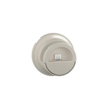 Enjoliveur Céliane - prise double pour chargeur USB version dock - titane